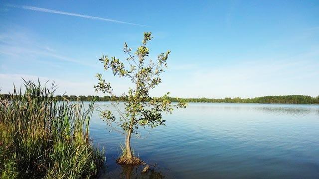 Angelschein NRW Blausteinsee
