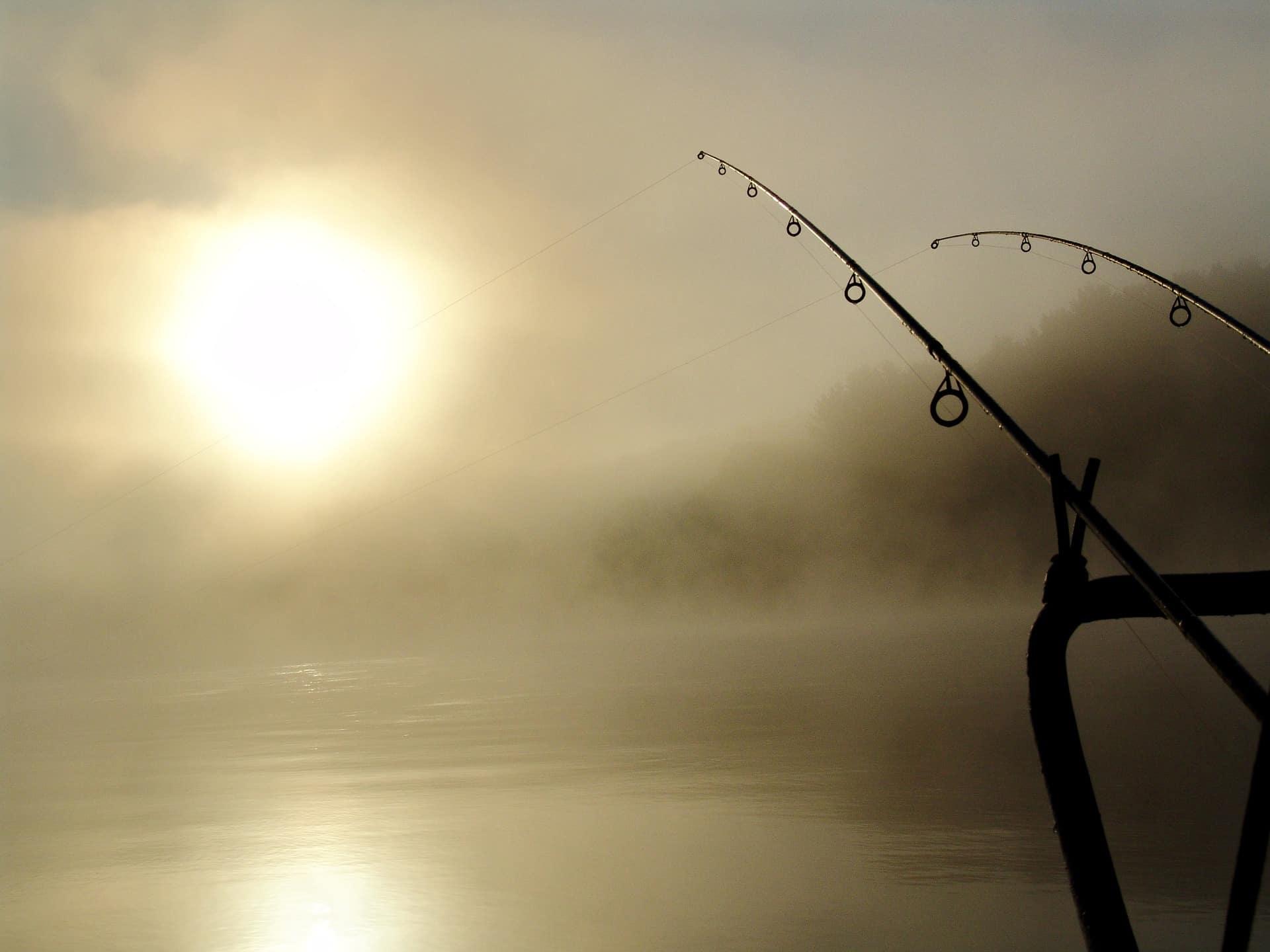 Angelschein Wismar - Angelruten am nebeligen See