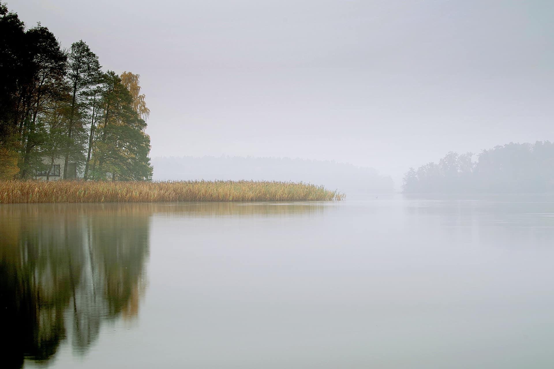 Angelschein Wismar - Nebeliger See