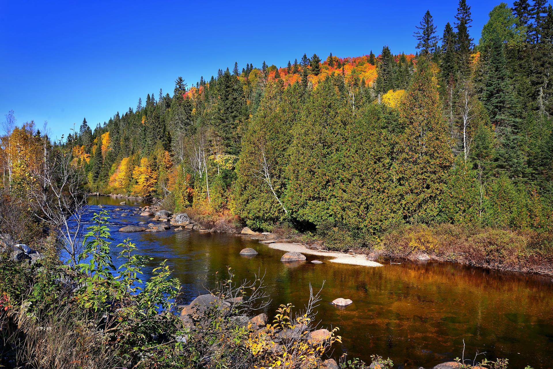 Angelschein Fuerth - Der Herbst beginnt